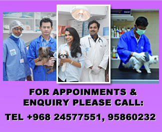 vet oman muscat contact us